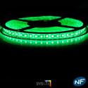 Nouveau Kit Ruban 3528/120 LED/ Mètre Professionnel 5 Mètres Vert pour intérieur (IP65)