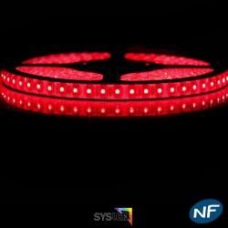 Nouveau Kit Ruban 3528/120 LED/ Mètre Professionnel 5 Mètres Rouge pour intérieur (IP65)