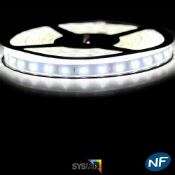 Ruban Led 5630 étanche 5 mètres 60 LED mètre Blanc vif