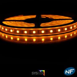 Ruban LED Professionel 5050 / 60 LED mètre or étanche