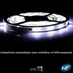 Nouveau 5050/30-SMD2811 blanc Froid