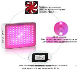 Lampe horticole LED 300W pour la culture de plantes en intérieur