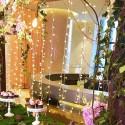 Guilande LED 10 mètres 100 boules blanc froid ( guinguette )