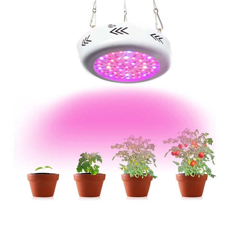 Lampe Led Horticole De 50w Sysled