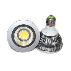 Ampoule LED Professionnelle PAR30 E27 12W