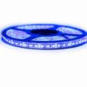 Nouveau Kit Ruban3528/ 120 LED/ Mètre Professionnel 5 Mètres Bleu électrique pour intérieur (IP65)