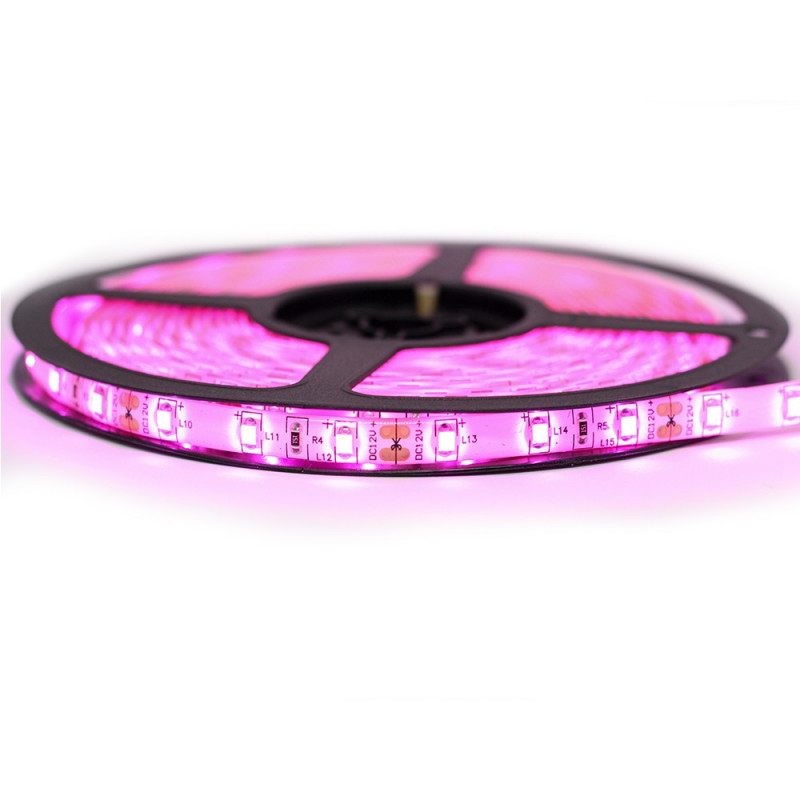 Ruban LED Professionel 3528 / 60 LED mètre Rose pour intérieur (IP65) 1 ,2,5 ,5,10 mètres aux choix