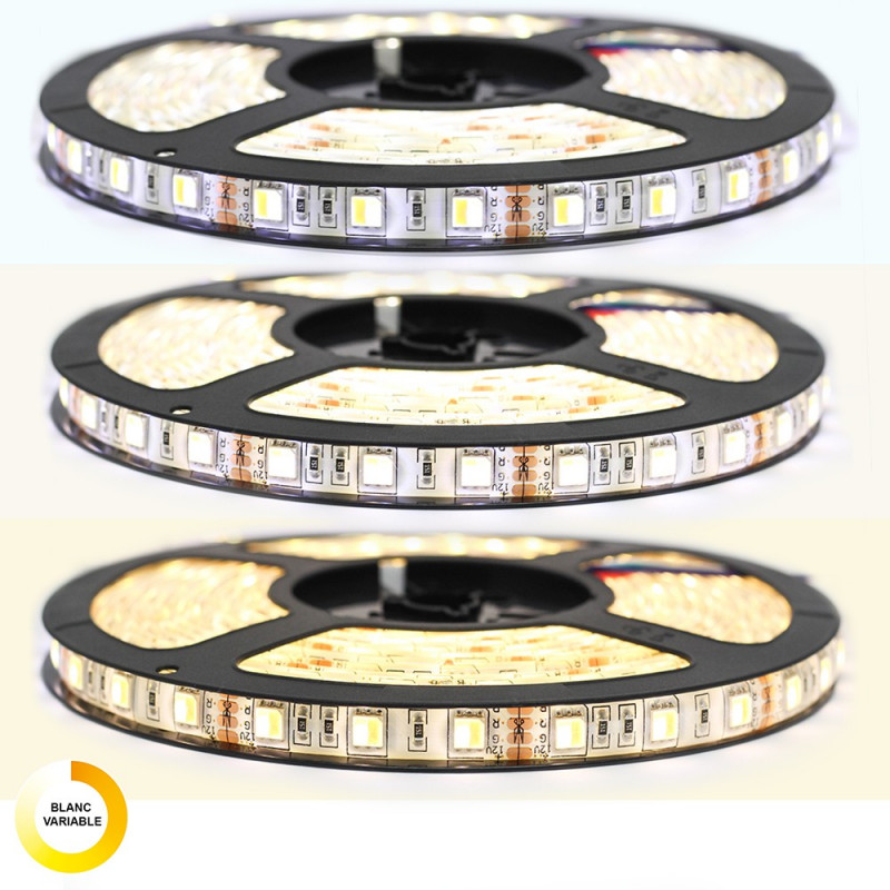 Ruban LED 5050 Professionnel Blanc neutre, blanc froid, ou blanc chaud avec télécommande radio Tranformateur
