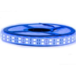 Nouveau Kit Ruban 5050/120 LED/ Mètre Professionnel 5 Mètres Bleu electrique Étanche (IP68)