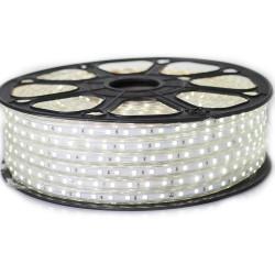 Ruban LED 5050 en 25 mètres Blanc Froid étanche (IP68)