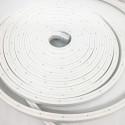 """Ruban LED """"néon flexible"""" Professionnel 12V EPISTAR 2835 120 LED/m de 5 mètres blanc Froid étanche (IP67)"""