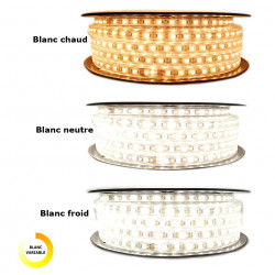 Ruban LED Professionnel EPISTAR 2835 120 LED/m de 25 ou 50 mètres Multi Blanc (IP68)